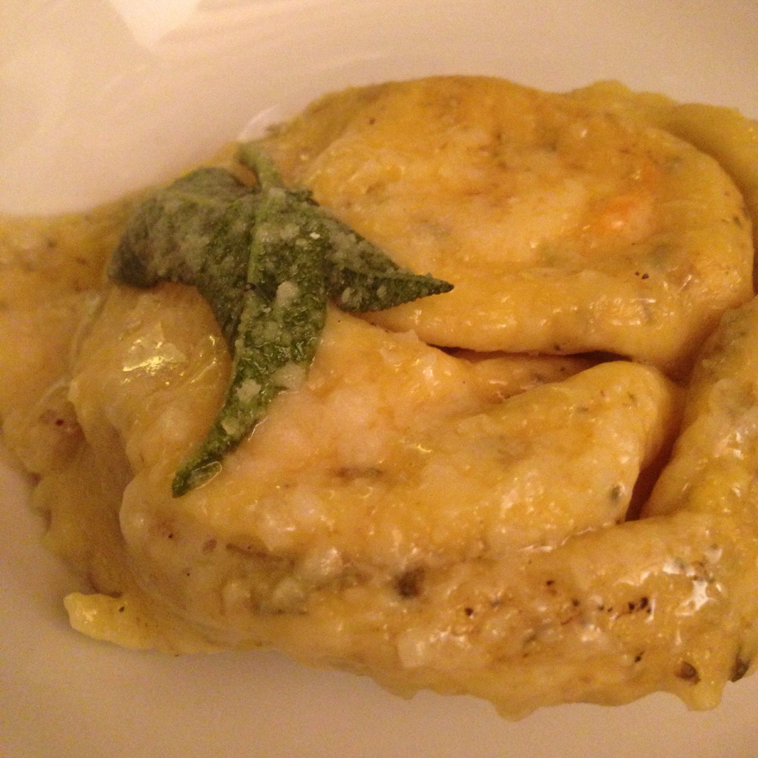 Tortellone stuffed with ricotta and pumpkin in a sage sauce